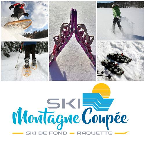 raquette-ski montagne coupee
